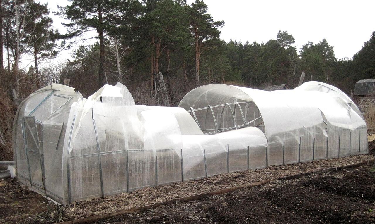 Неподготовленная теплица из поликарбоната к зиме