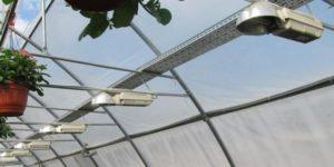 Монтаж осветительной системы в теплице из поликарбоната