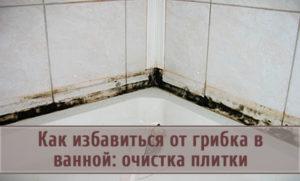 Грибок на плитке в ванной